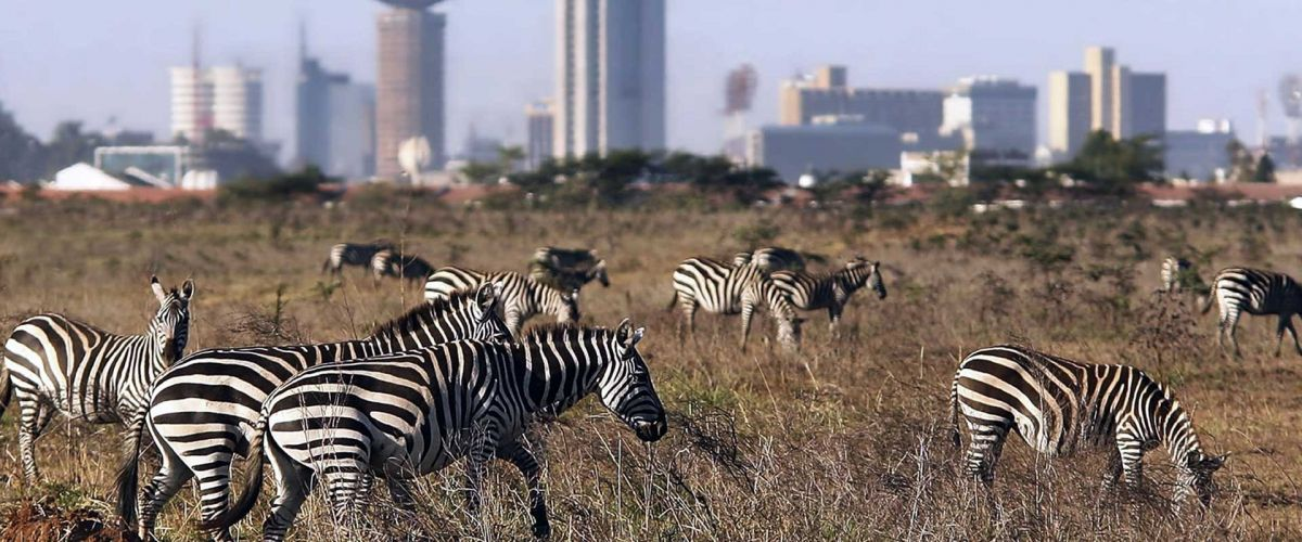 Image: 2019-04/top-rated-tourist-attractions-in-kenya.jpg